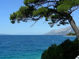 Prelepa obala Jadrana